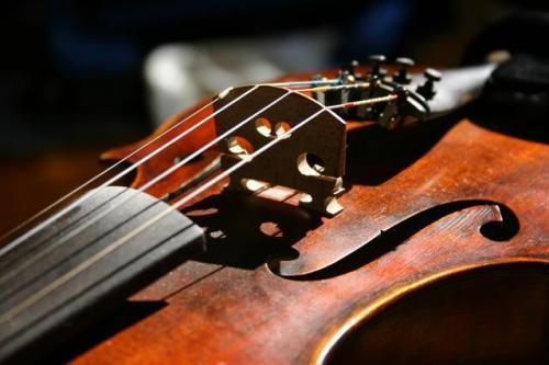 Detalle de violín con brillo en su madera.