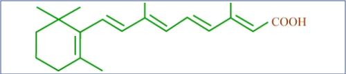 Molécula de retinol, Vitamina A